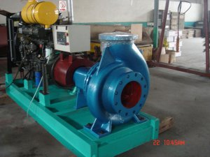 Large Diesel Engine Driven Water Pu